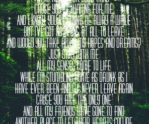 ed sheeran, forest, and one image