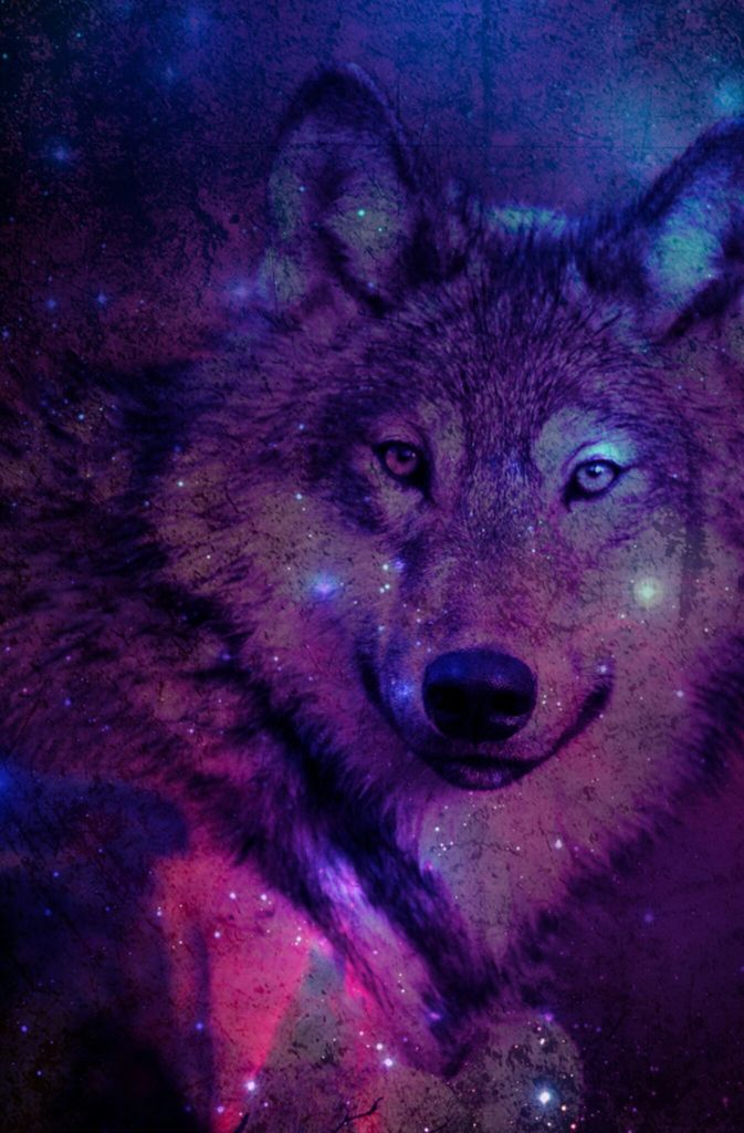 Wolf In Space Shared By Little Dreams On We Heart It