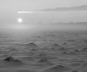 black and white, cold, and horizon image