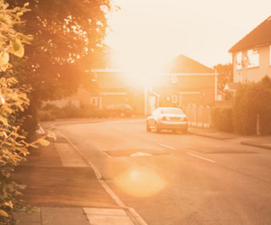 365, soft, and lens flare image
