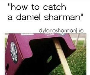 daniel sharman