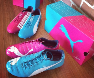 puma and soccer image