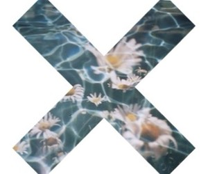 flowers, water, and x image