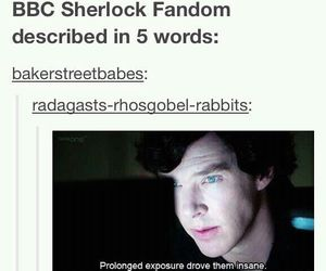sherlock and funny image
