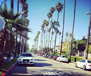 summer, car, and palms image