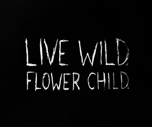 flowers, live, and wild image