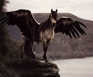 horse and pegasus image