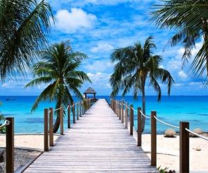 amazing, beach, and beauty image