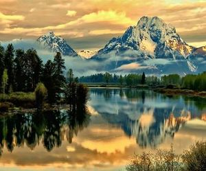 beautiful, day, and nature image