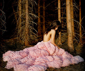 dress, feathers, and pink image