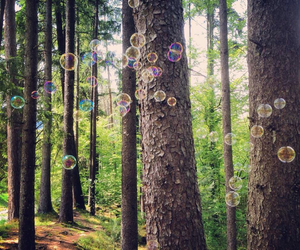 bubbles, escape, and fairytale image