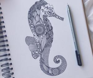 drawing, art, and seahorse image