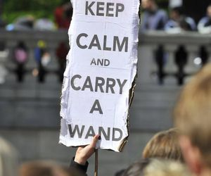 harry potter, keep calm, and wand image