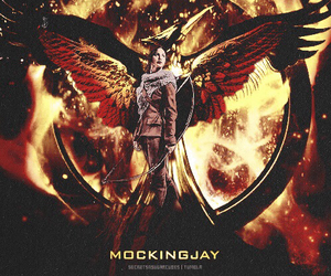 mockingjay and catching fire image