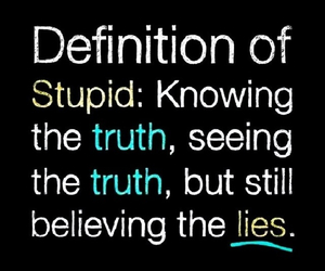 stupid, lies, and quotes image