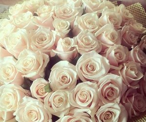 beautiful, roses, and sweet image