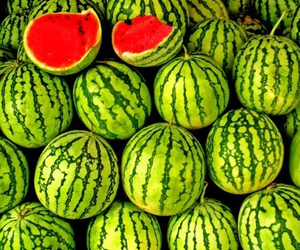 green, watermelon, and red image