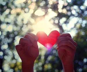 hands, sun, and spread the love image