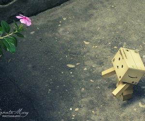 danbo, flower, and box boy image