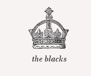 family, harry potter, and blacks image