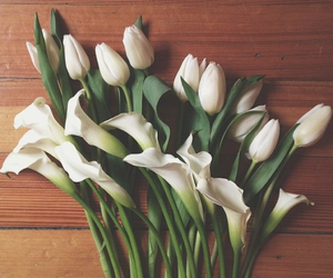 beautiful, calla lilies, and flowers image