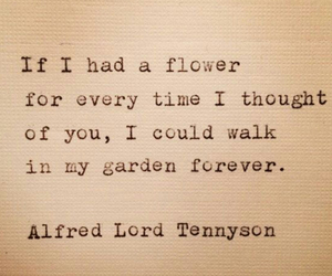 flowers, garden, and quote image