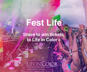 fest life, life in color, and color image