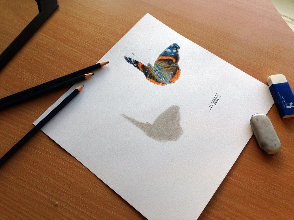 Butterfly color pencil drawing by atomiccircus on deviantart