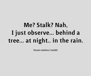 stalker, funny, and night image