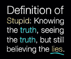 stupid, truth, and lies image