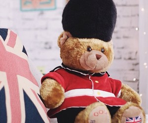 bear, inglaterra, and TED image