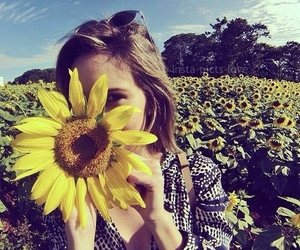 girl and sunflowers image