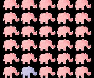 elephant, background, and animal image