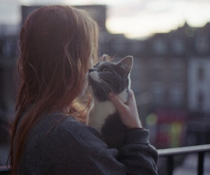 cat, girl, and city image