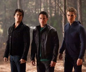 the vampire diaries, damon, and ian somerhalder image