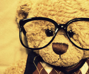 cute, bear, and glasses image
