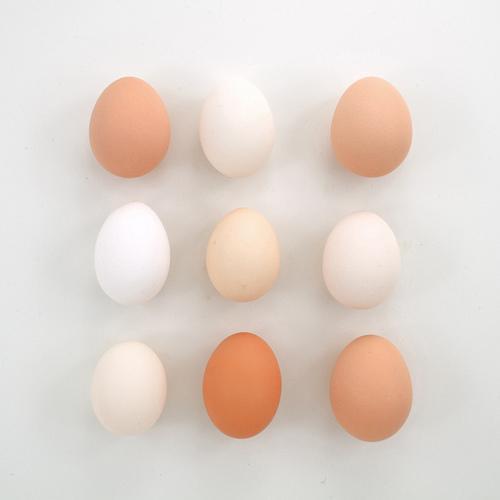 eggs, minimal, and white image