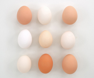 eggs, minimal, and white image