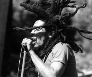 bob marley, music, and reggae image