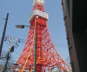 japan, tokyo, and tokio image