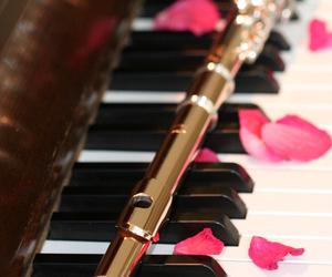 flute, piano, and rose petals image