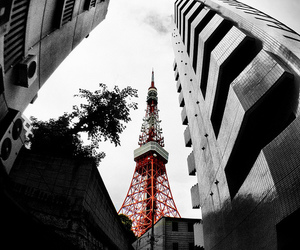 city, tokyo tower, and japan image