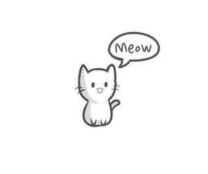 meow, cat, and cute image