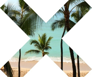 beach, xx, and palmtrees image