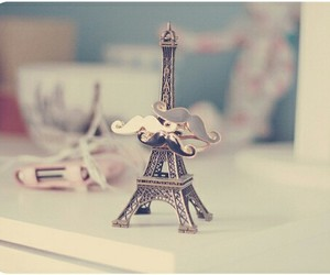 cuteness, mustache, and paris image