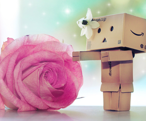 danbo, rose, and flower image