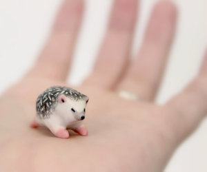 baby, hand, and hedgehog image