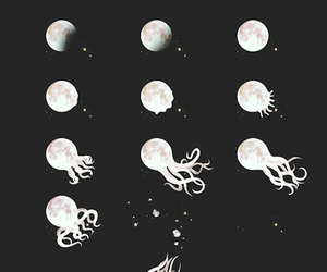 moon, octopus, and black and white image
