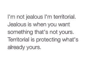 jealous, territorial, and quotes image
