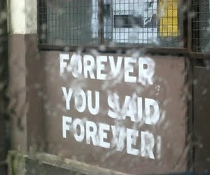 text and forever image